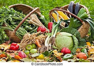 fresco, verduras cruas, em, capim