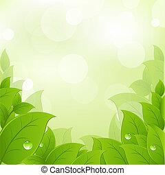 fresco, y, hojas verdes