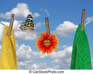 Fresh Air - Butterfly on a clothesline with towels and...