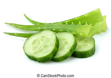 Fresh Aloe Vera with sliced cucumbers.