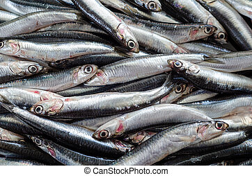 Fresh anchovy fish on the supermarket