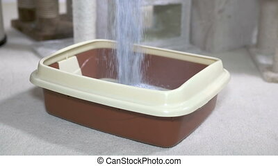 Fresh and clean cat litter box filling with unscented...