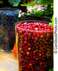 fresh and delicious cranberries - fruits and vegetables.