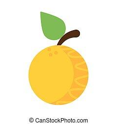 fresh and delicious orange on white background