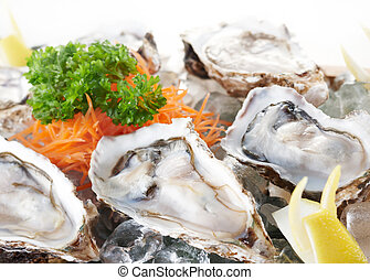 raw oysters - fresh and delicious raw oysters as food...