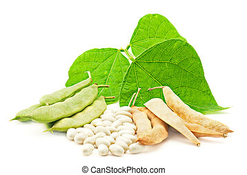 Fresh and dry kidney beans with leaves on white