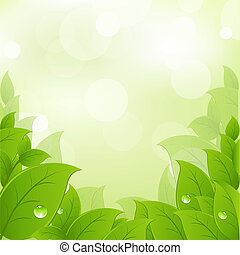 Fresh And Green Leaves, Vector Illustration