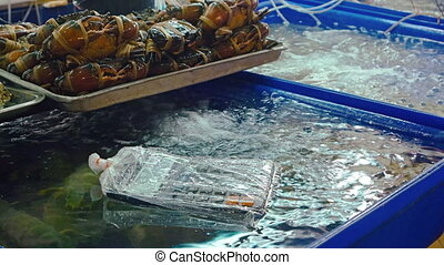 Fresh and live seafood for sale at a local public market in Phuket.