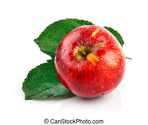 fresh apple fruits with green leaves