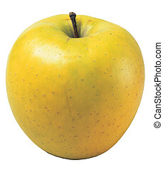 apple - fresh apple