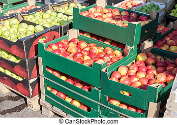 Fresh apples for sale at the farmers market