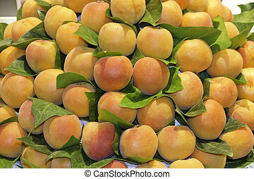 fresh apricots at a fruit market