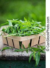 Fresh arugula in a wooden box