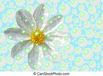 fresh as a daisy - a fresh daisy behind bubbles