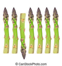 Fresh Asparagus - Abstract design of seven fresh asparagus...