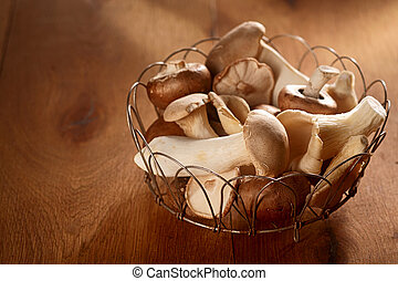 Fresh autumn harvest of King Oyster mushrooms