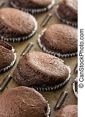 Fresh baked chocolate cup cakes in the baking tray