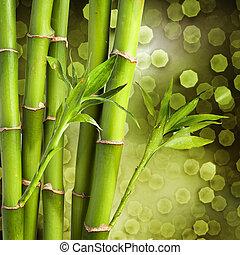 Fresh Bamboo