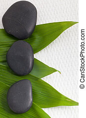 Fresh bamboo leaves with basalt massage stones