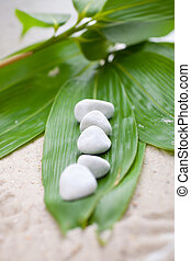Fresh bamboo leaves with white spa stones
