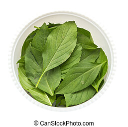 Fresh basil leaves in cup on a white background