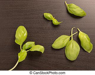 Fresh Basil leaves on a black background