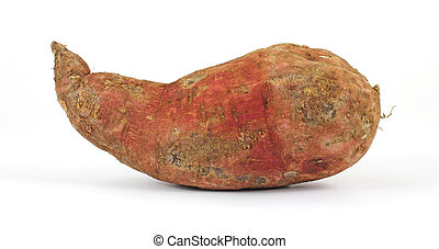 Fresh batata - A fresh large batata on a white background.