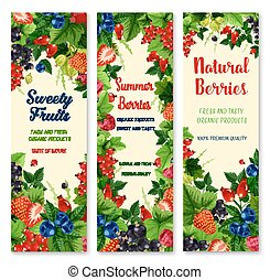 Fresh berries and fruits vector banners set