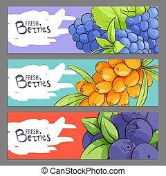 Fresh berries banners