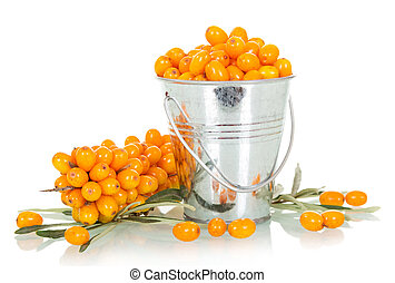 Fresh berries of sea-buckthorn in bucket isolated on white...