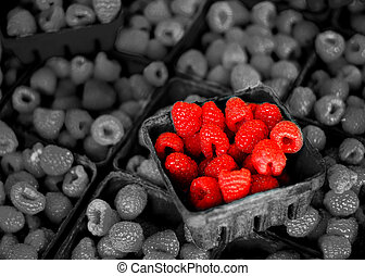 Fresh Berries on Display - Fresh berries in bins on display ...
