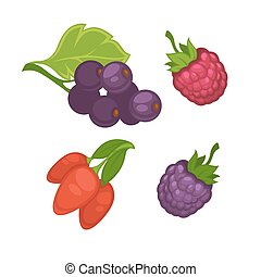 Fresh berries set on white vector poster in graphic design