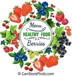 Fresh berries vector poster or fruit menu