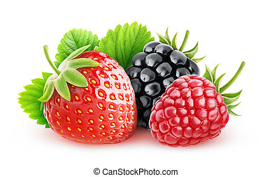 Fresh berries - Wild berries over white background with ...