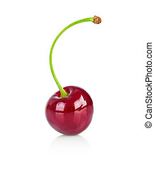Fresh berry cherry on branch healthy food