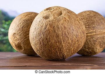 Fresh bio coconut in a jungle
