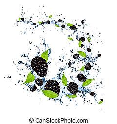 Fresh blackberries falling in water splash, isolated on white background