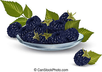 Fresh blackberries with leaves in glass bowl Vector...