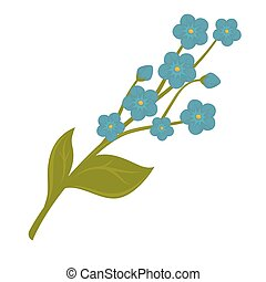 Fresh blue forget-me-not flower bundle isolated on white