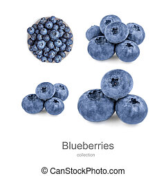 Fresh Blueberries collection  isolated on white background. Wild orest berries creative layout