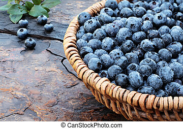 Fresh Blueberries - Fresh picked organic blueberries in a...