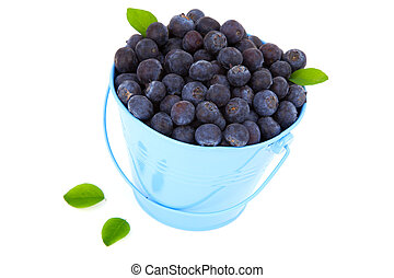 fresh blueberry in a blue mug with leaves, over a white background.