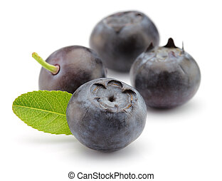 Fresh blueberry on a white background