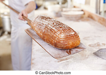 Fresh bread from the oven