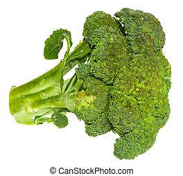 Fresh Brocolli