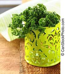 fresh bunch kitchen herb parsley