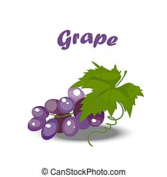 fresh bunch of grapes