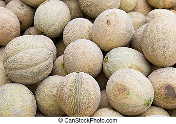 Fresh cantalopes ready for sale at the market