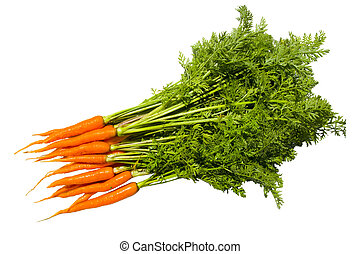 Fresh carrot fruits with green leaves.