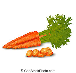 Fresh carrot isolated